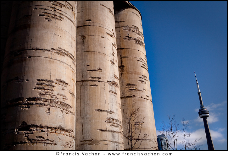 CN tower is seen behind the Canada Malting Co. grain processing tower in Toronto April 22, 2010. The tower is part of the earlier industrial era of Toronto heritage, concentrated along the Toronto Harbour and lower Don River mouth.